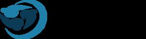 Dansk Computer Service